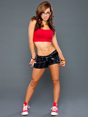 Aj Lee Thanks Kaitlyn On Twitter Www Wrestlesite Com