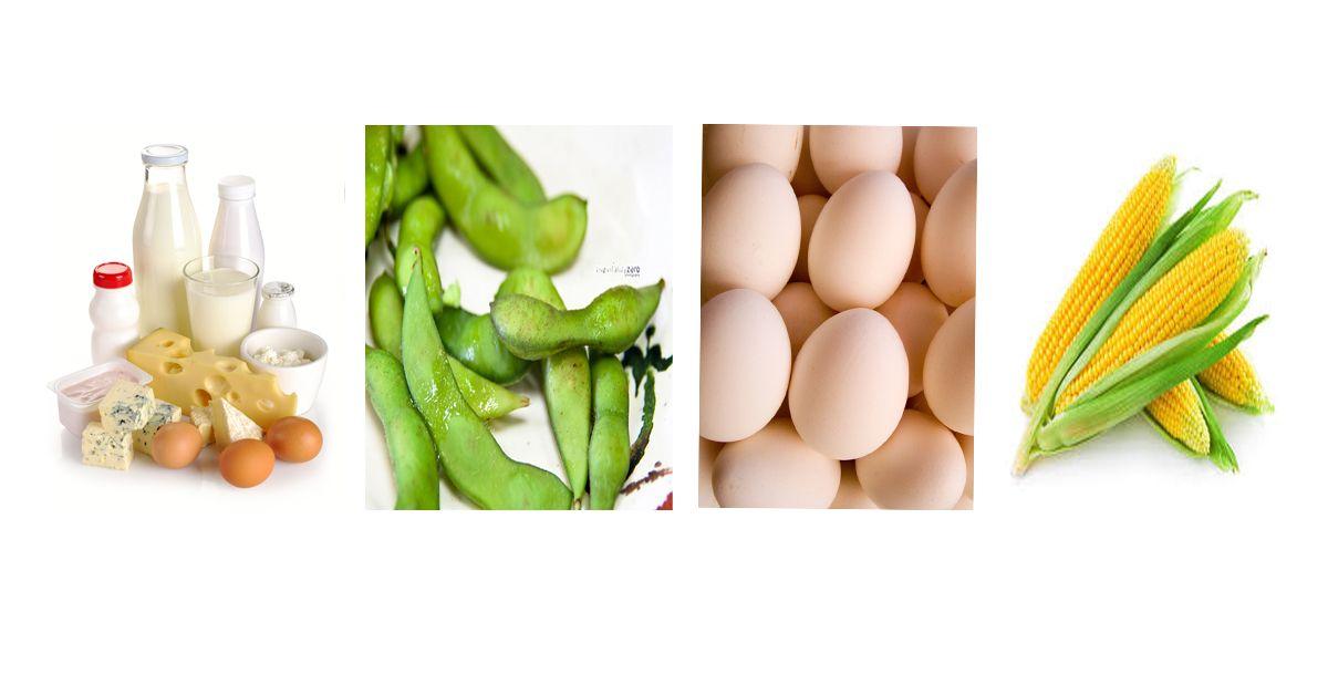 What Not to Eat on a Gluten Free Diet (besides gluten ...