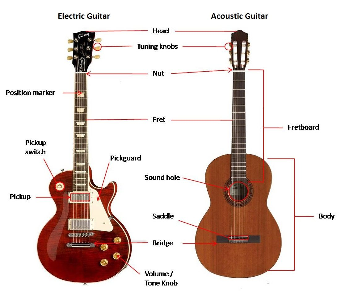 Guitar Body Diagram Wiring Explained Parts Of A Electric Guitars And Other Instruments Pinterest Fender