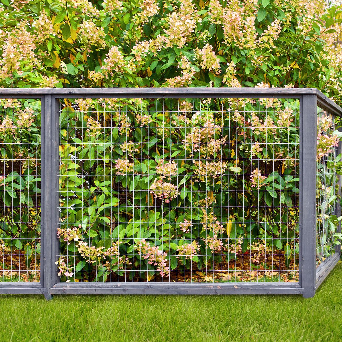 "Expert Gardener Galvanized Steel Gray Welded Wire Fence, 36"" x 50' Roll - Walmart.com"