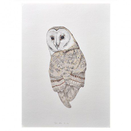 Tyto Alba by Beth-Emily, a talented illustrator from Tasmania, who finds inspiration in nature and the fantastical world of her imagination. Her work is a mixture of pencil, watercolour and digital elements to bring each piece together. Her beautiful illustrations are printed on high quality, archival art paper with archival inks, and they arrive ready to frame via 'hand- made markets' - templeandwebster.com.au<3<3<3