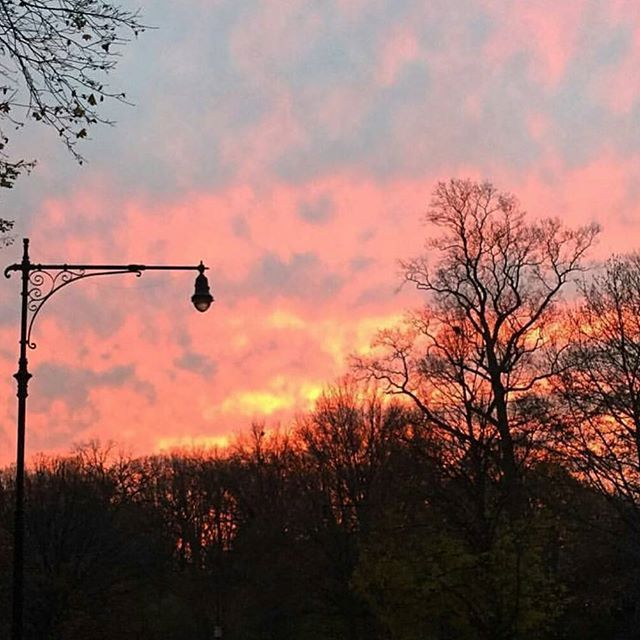 Surreal Sunsets in the City   #gorgeousgirlsonthego #pictureperfect #sunset #nyc #manhattan #park #stroll #nofilter #love