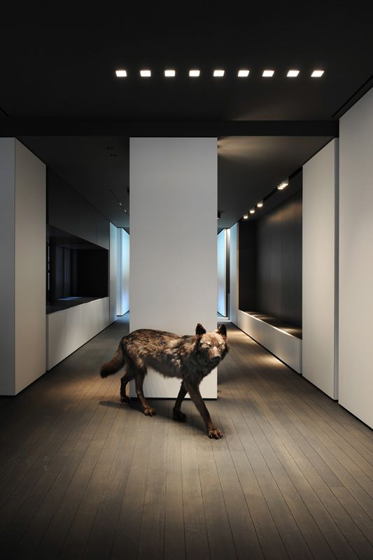 We Deliver That Superior Interior Acoustic Experience You Have Been Looking For Diseno De Interiores Ideas Diseno De Interiores Ideas De Diseno De Interiores