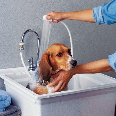 Indoor Dog Bath Home Dog Supplies Dog Grooming Dog Bathing