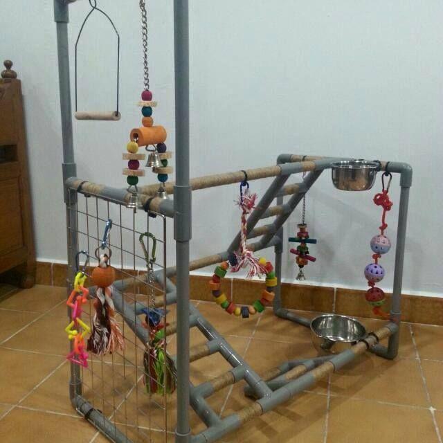 Pvc Playgym Stand Parrot Toys Diy Bird Toys Homemade
