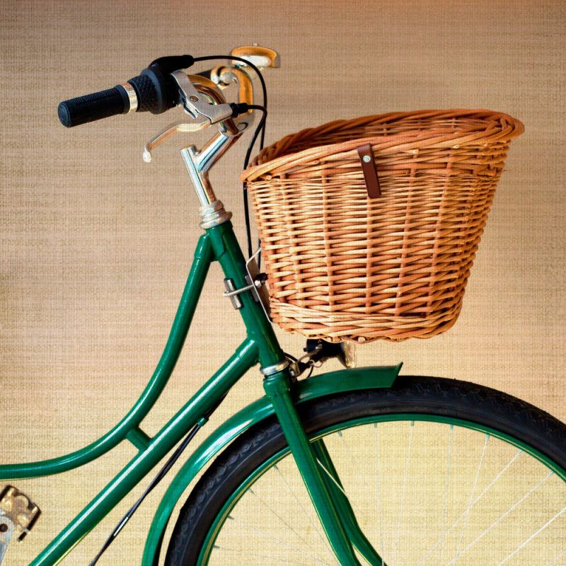 Vintage green bicycle! I must have one of these someday. :)