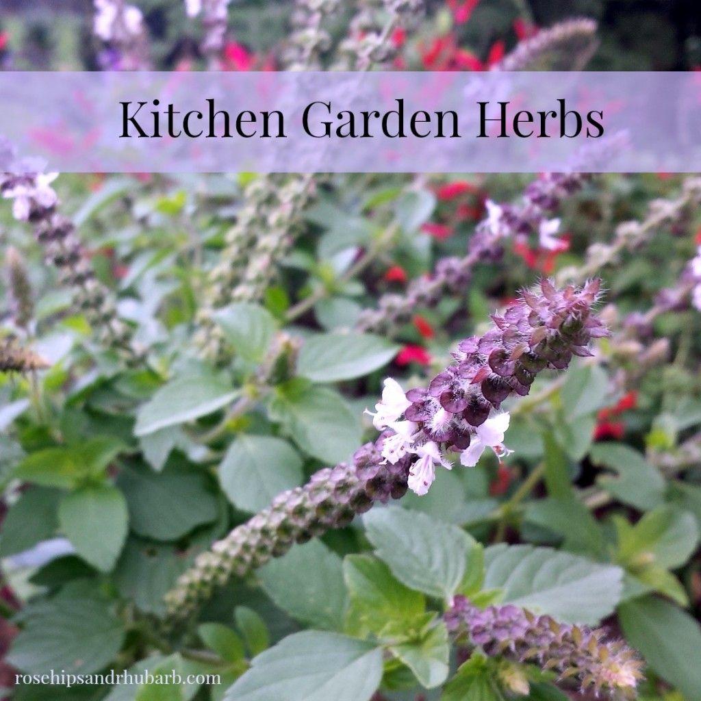 My Kitchen Garden My Kitchen Garden Part 2 Herbs Gardens Herbs And Perennials