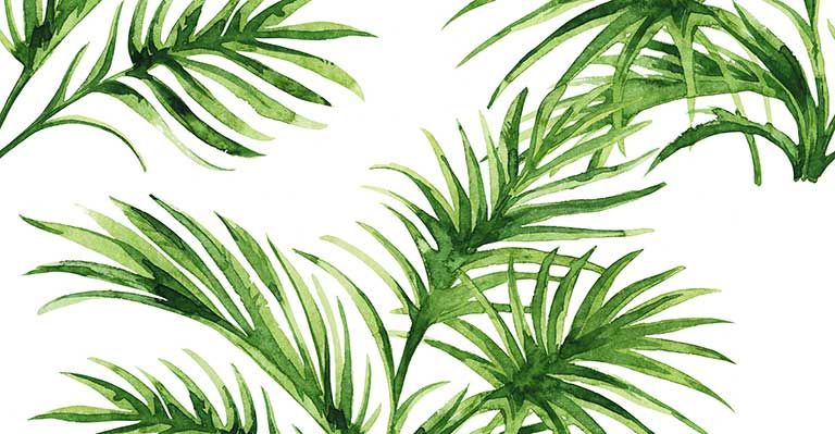Fern Leaves watercolor wallpaper pattern print