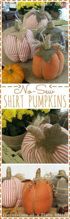 CONFESSIONS OF A PLATE ADDICT: Easy No-Sew Shirt Pumpkins Source by paintergreen00  -  #fabriccraftsAfrican #fabriccraftsEasy #fabriccraftsHoliday #fabriccraftsPreschool #fabriccraftsToys #nosewshirts