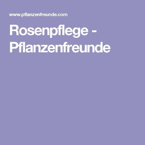 Rosenpflege - Pflanzenfreunde