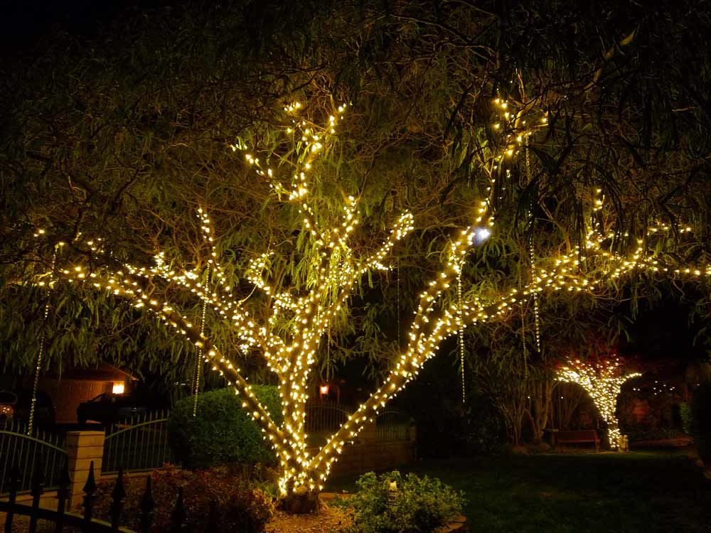 Wedding Tree Lighting Indoor Christmas Lights Retro Christmas Lights Outdoor Tree Lighting