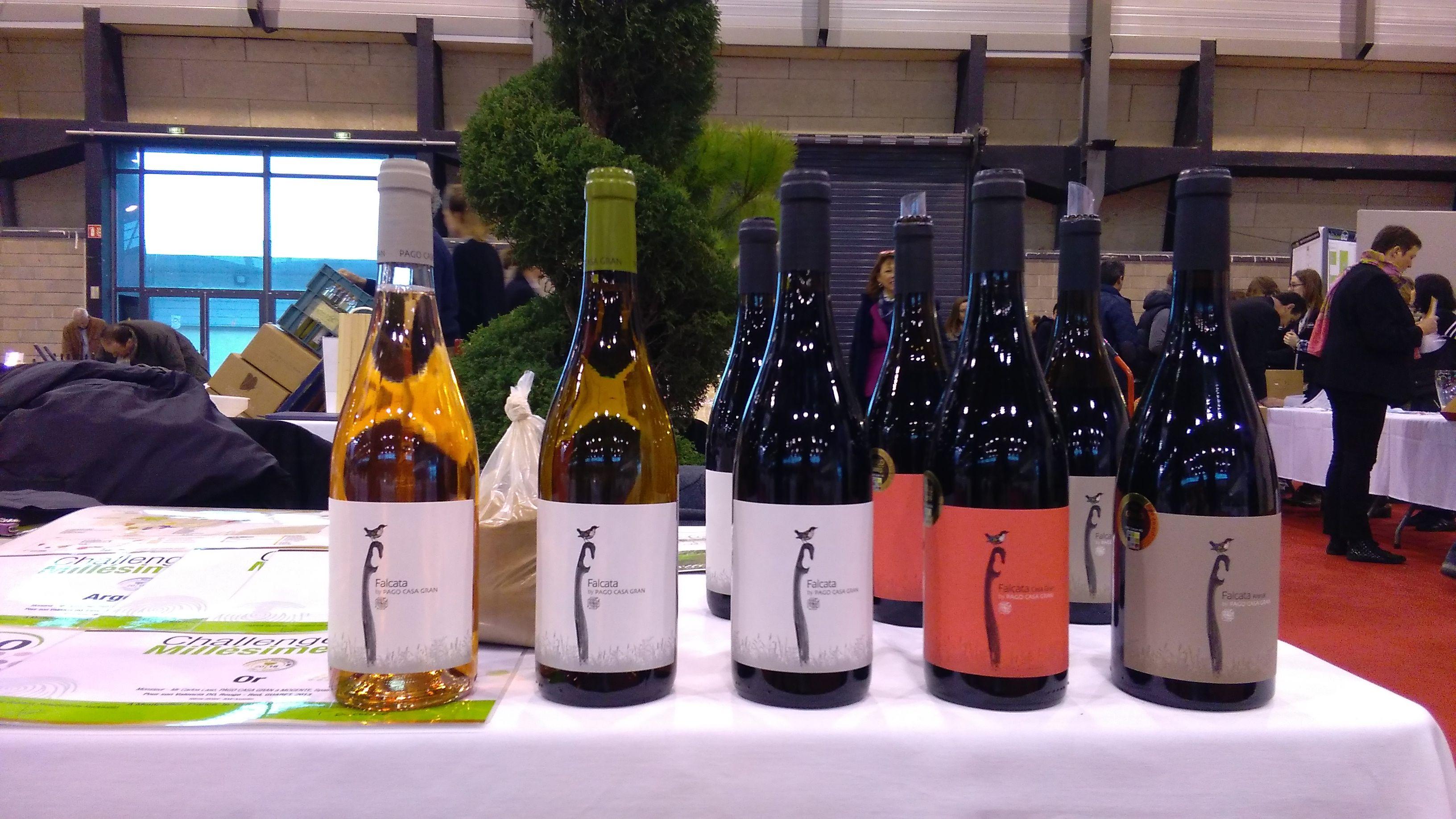Diseño de la etiqueta para la variedad Falcatade Bodegas Pago Casa Gran en la Feria de Millesime Bio de Francia.