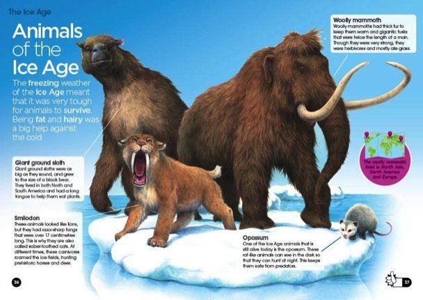 Classroom Decor Jungle ~ Animals of the ice age a ed magic treehouse themes