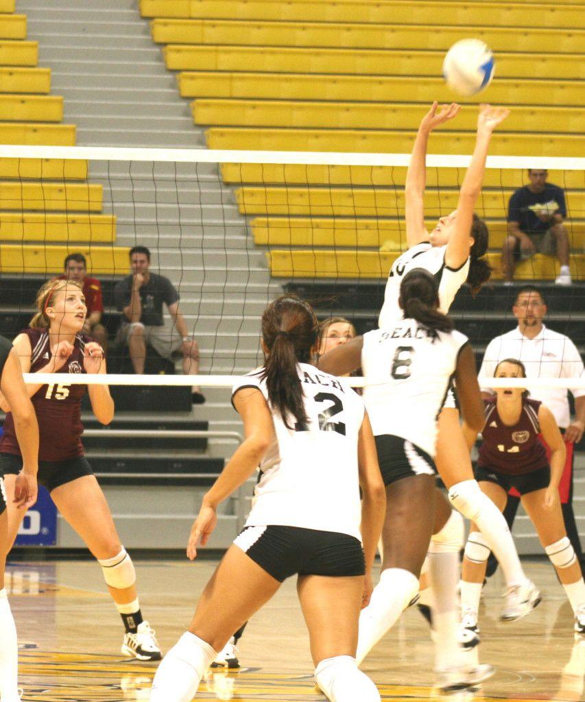 Women S Volleyball Captures Harvard Invitational Crown Women Volleyball Volleyball Women