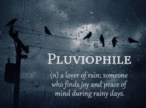 I Love Rainy Days, Rainy Nites, Rain On A Tin Roof. Thunder And