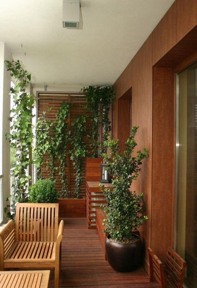 balkongestaltung holz bodenbelag sichtschutz kletterpflanzen - tipps pflege pflanzen wintergarten