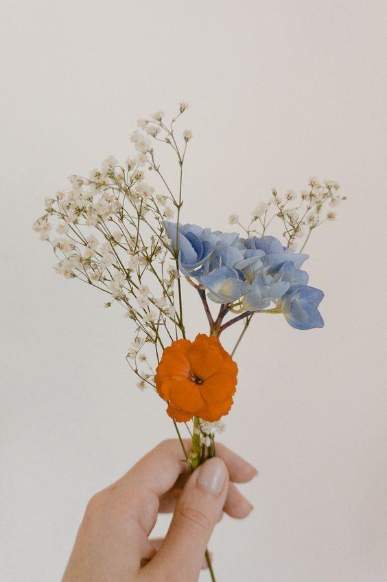 I N S T A G R A M - ans ☼ (Ansley Acree) #wildflowers