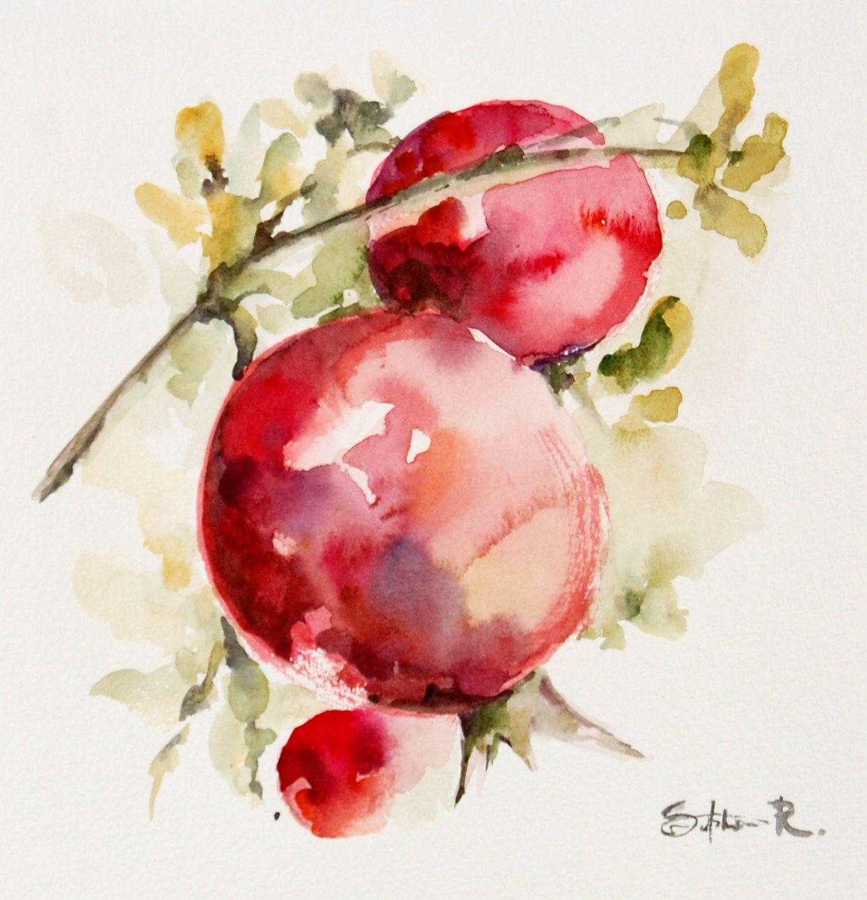 Art Art De L Aquarelle De Mur Rouges Grenades Sur Une Par
