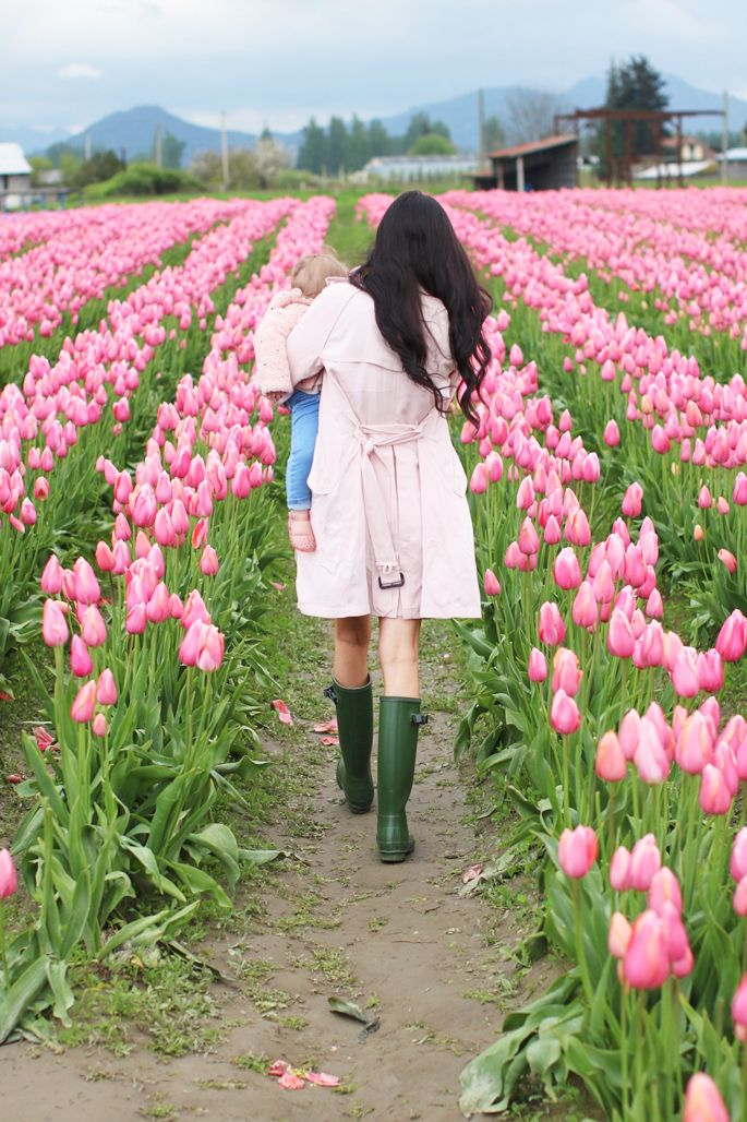 Exploring The Tulips Rach Parcell Tulips Pink Peonies Tulip Festival