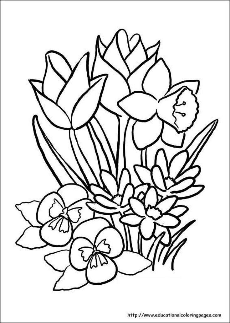 Kids Will Love These Free Springtime Coloring Pages Spring Coloring Sheets,  Flower Coloring Sheets, Printable Flower Coloring Pages