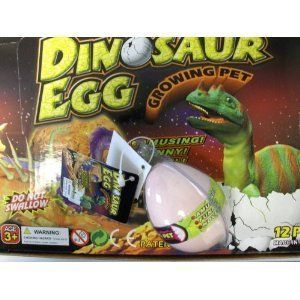 Hatching Dinosaur In Egg Case Pack 12 by Novelties Wholesale. $19.99. Within 12-24 hours the egg shell will break and the pet will begin to hatch.. Submerge the Dinosaur egg in water.. They grow and grow and grow.. Case Pack 12. Lots of fun.. Hatching Dinosaur In Egg Case Pack 12