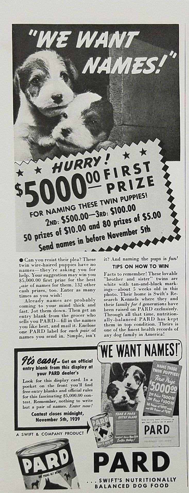 1939 Pard Dog Food Vintage Ad - Contest Wire Haired Puppies ...