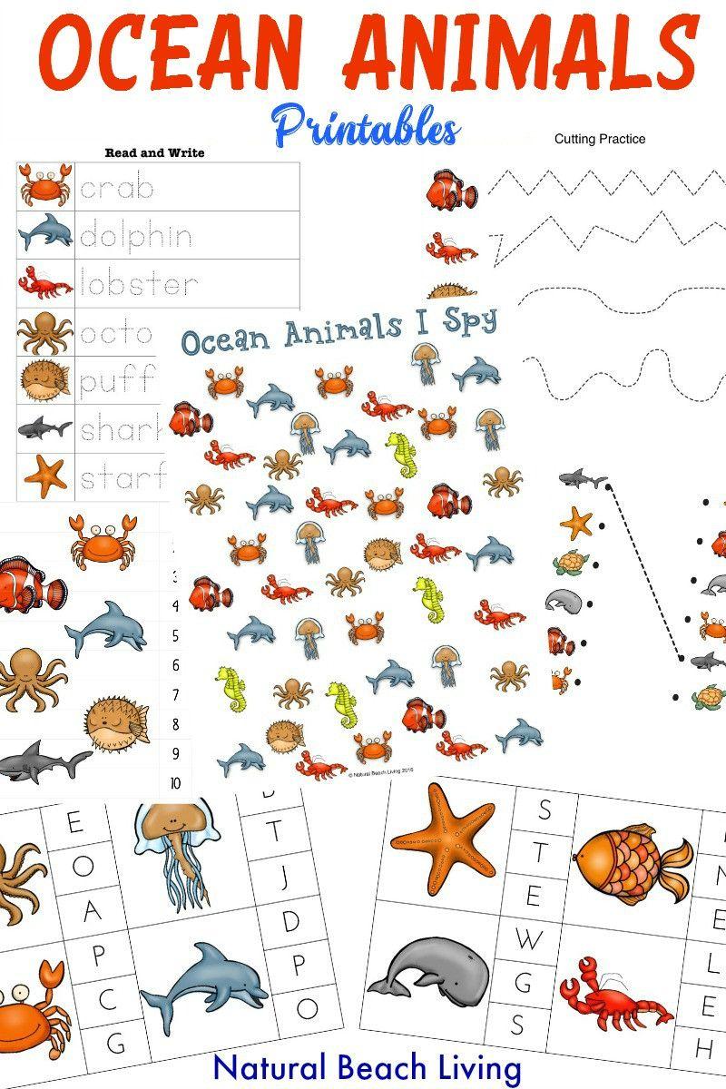 Pin On Printable Worksheets For Kindergarten [ 1200 x 800 Pixel ]