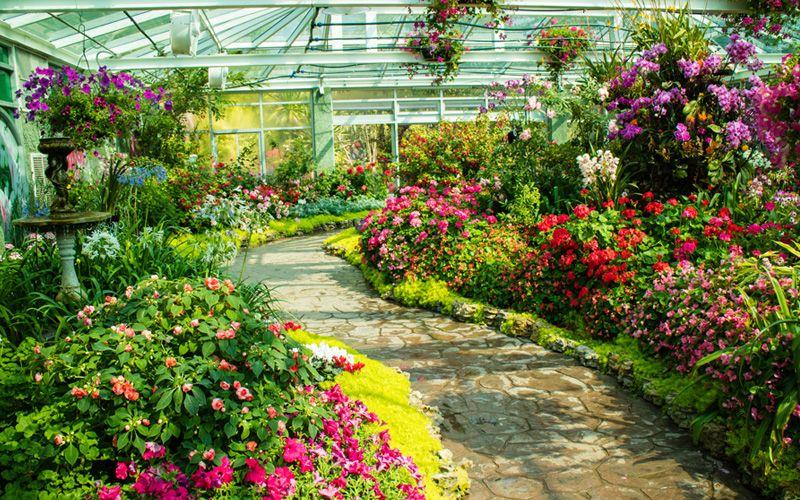 20 garden ideas that will blow your mind