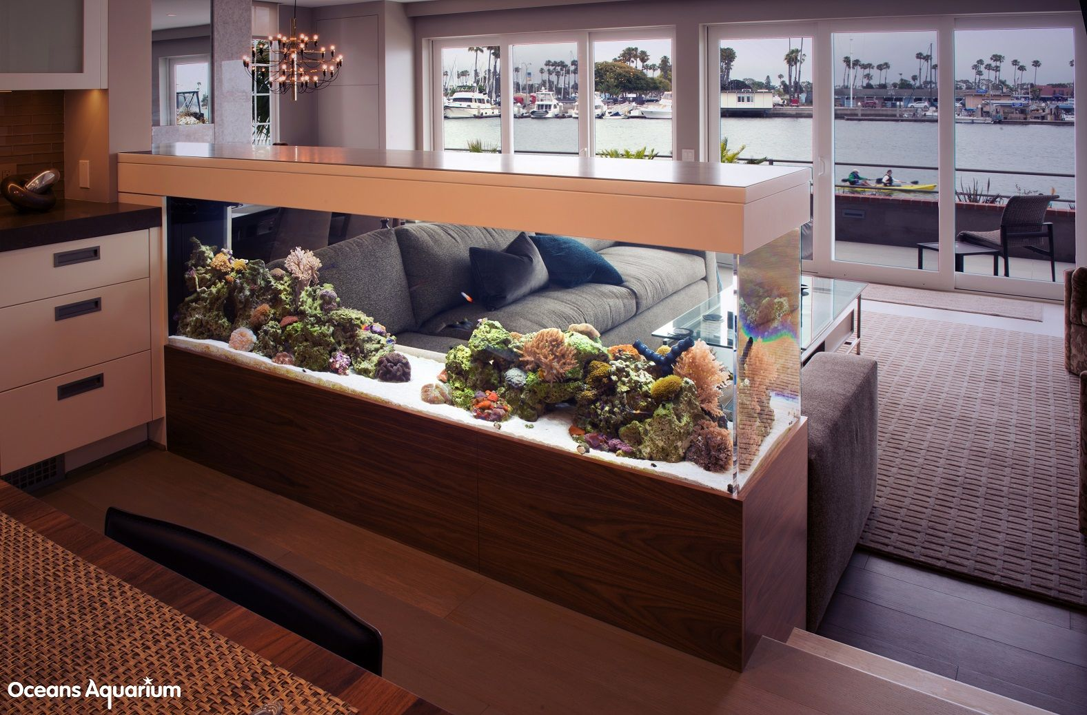 200 Gallon Living Reef Custom Aquarium. Room Divider Peninsula Style  Aquarium. In Long Beach