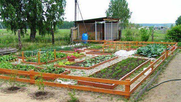 vegetable garden design ideas garden shed low fence - Vegetable Garden Design Ideas