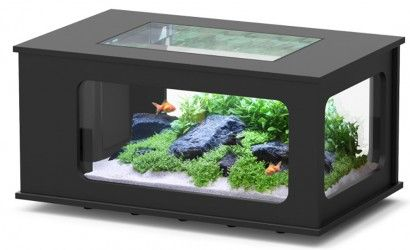 Aquarium Table Pas Cher Aquatable Pas Cher 313 Litres Table Basse Aquarium Table En Verre Aquarium