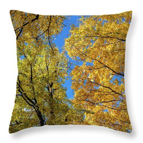 #AnnaMatveeva #FineArtPhotography #ArtForHome #FineArtPillow #Photography #Pillow #Autumn #Landscape