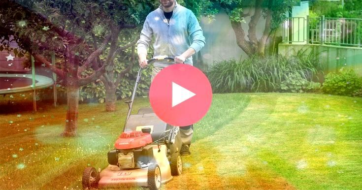 renew your lawn without digging To renew your lawn without digging To renew your lawn without digging Vertikutieren Wann ist der richtige Zeitpunkt Scarify When is the ri...