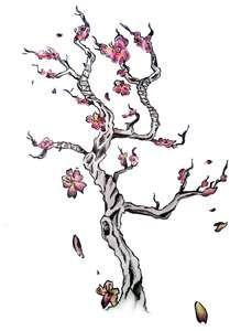 Cherry Blossom Tree Tattoo Cherry Blossom Tree Tattoo Blossom Tree Tattoo Tree Tattoo Designs