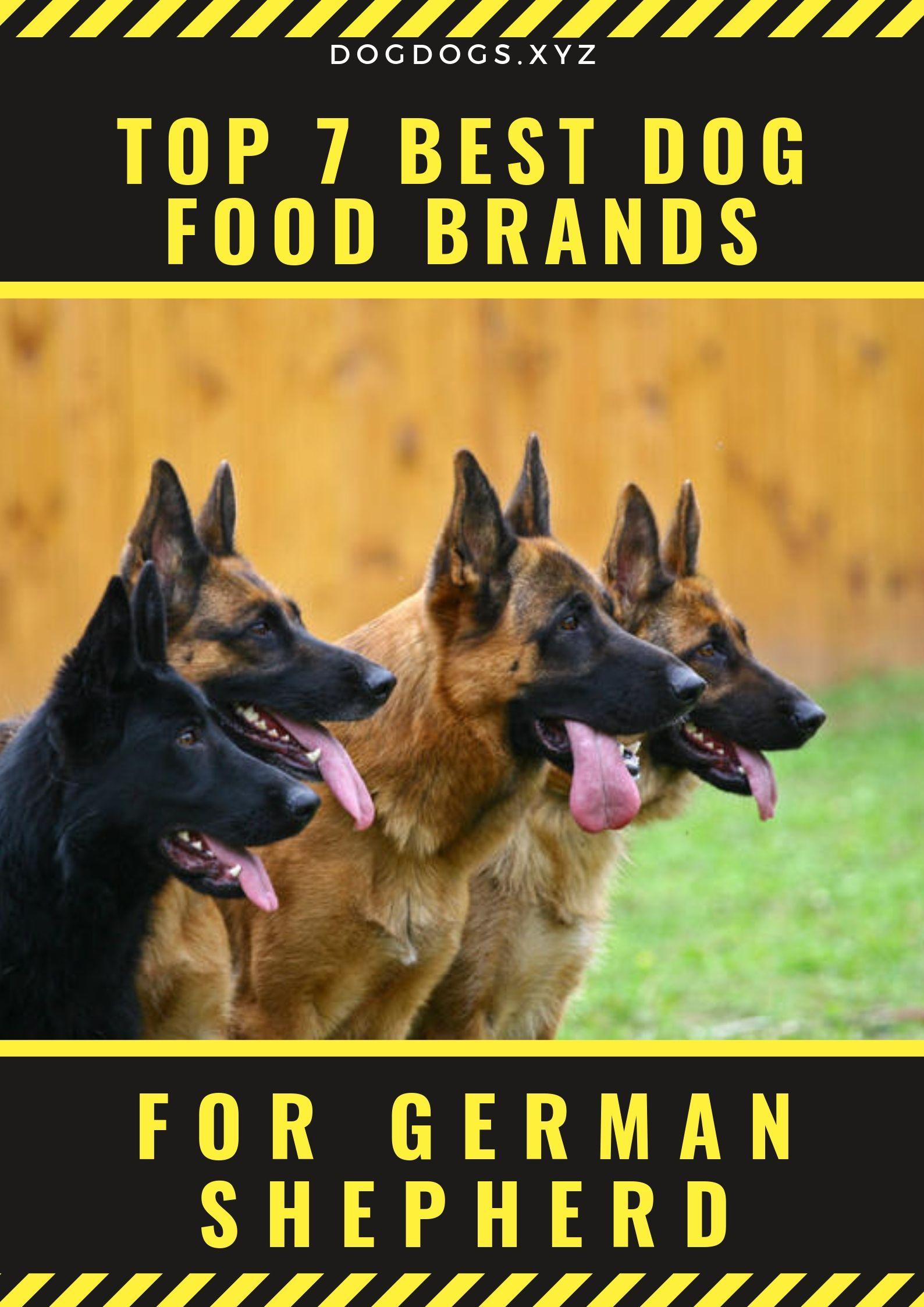 Top 7 Best Dog Food Brands Dog Training Dog Food Brands Best