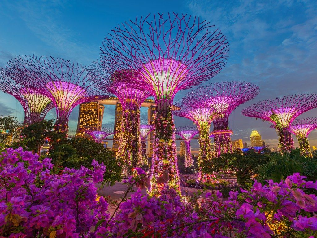 9506650e167c3a196e20914c82753057 - Hotels In Gardens By The Bay