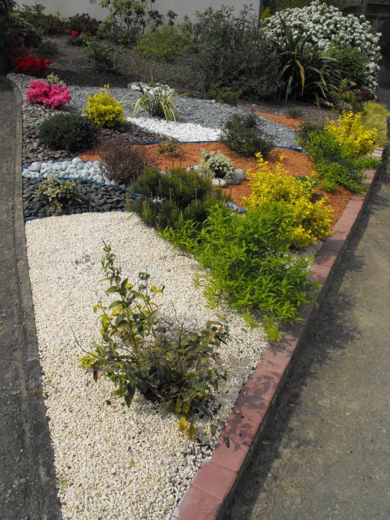 Amenagement massif en pointe avec bordure en paves for Amenagement jardin bordure