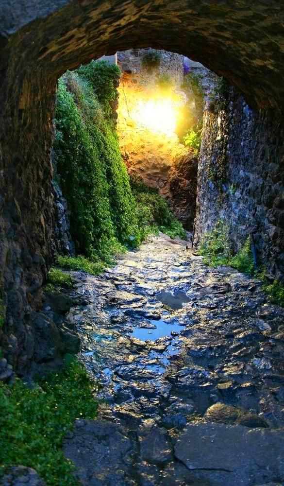 As I walk this path the fairy wish I ask!