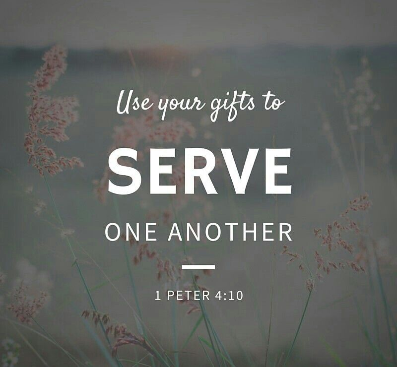 The bible says in 1 peter 410 god has given each of you a gift the bible says in 1 peter god has given each of you a gift from his great variety of spiritual gifts use them well to serve one another nlt negle Image collections