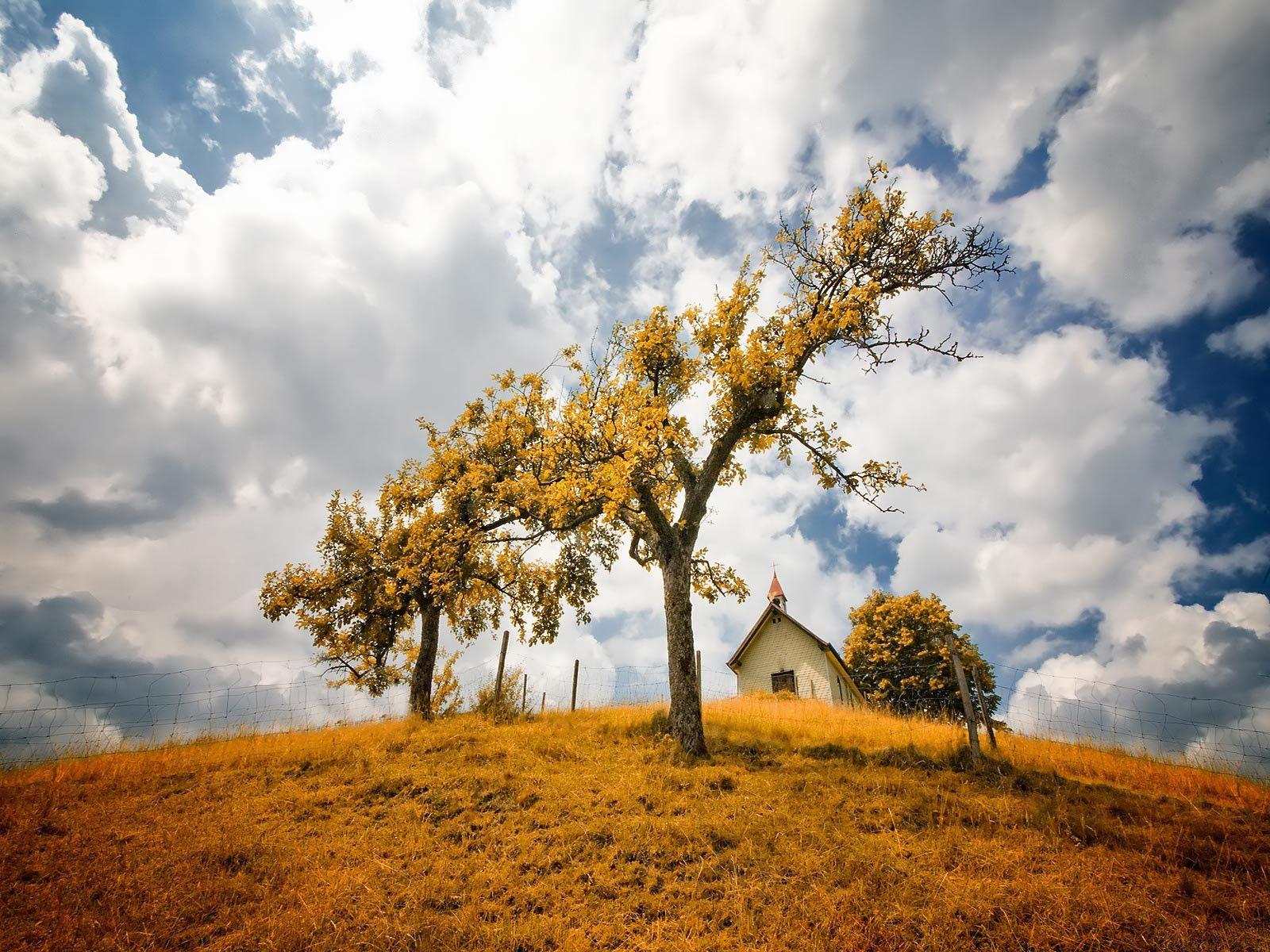 Nature Poetry desktop wallpaper downloads backgrounds