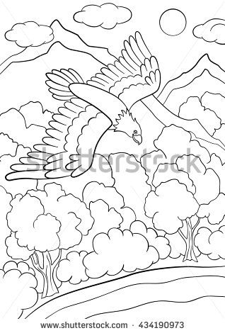 coloring pages wild birds cute eagle flying under the forest and smiles