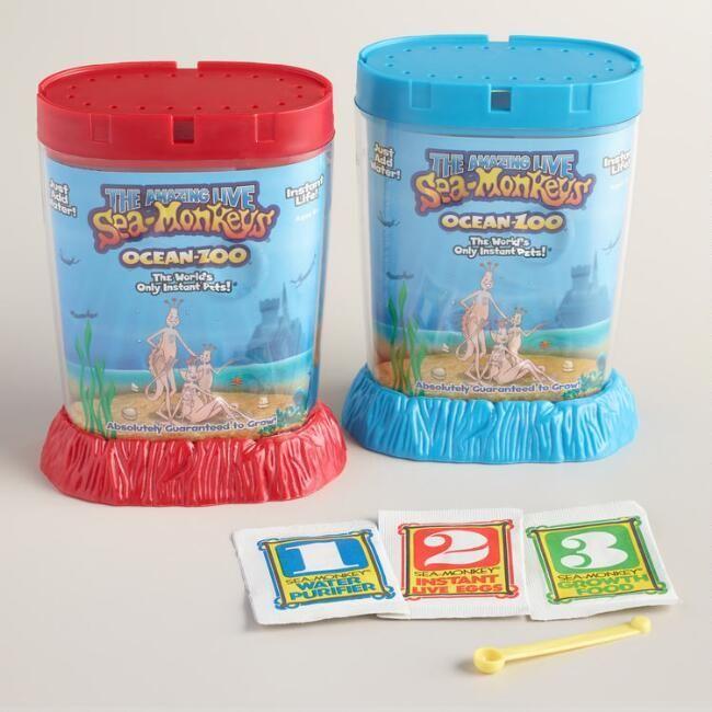 Sea Monkeys Ocean Zoo Kit Hatch Your Own Sea Creatures