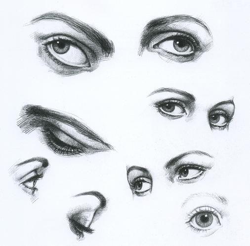 учимся рисовать портреты карандашом поэтапно для ...