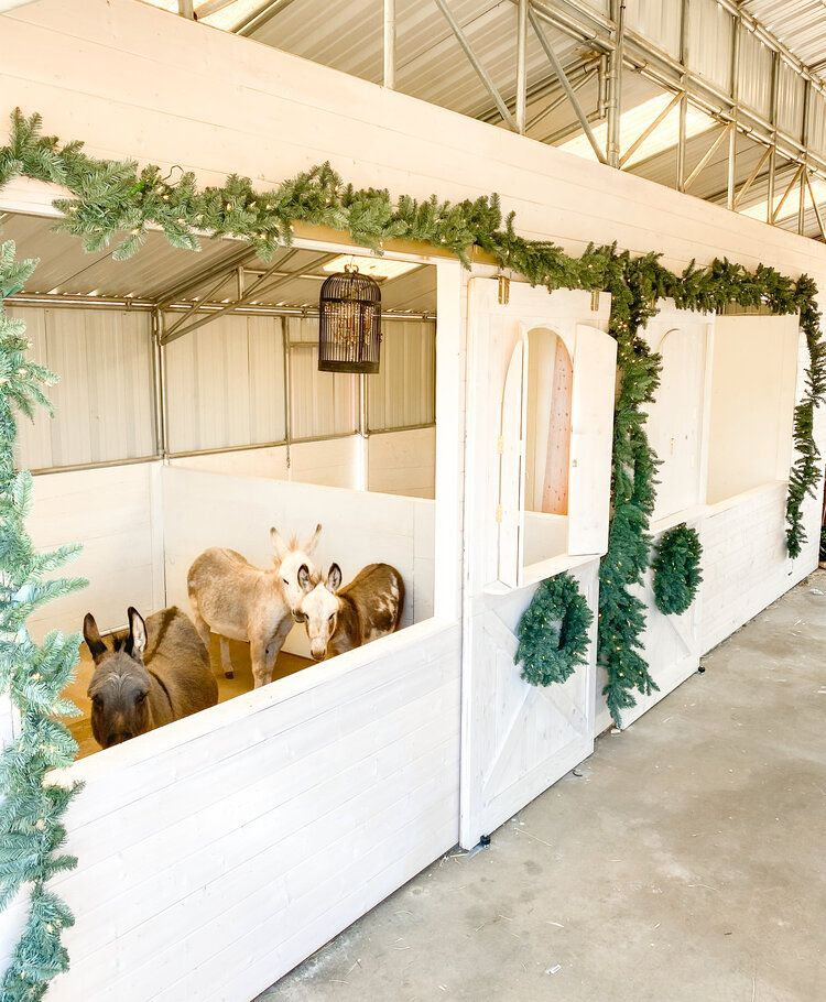 How to Decorate your Barn for Christmas