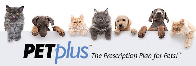 72 Off Free Shipping At Petplus Com Coupons Free Printable Coupons Discount Deals Free Printable Coupons Pets Pet Medications