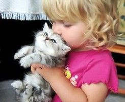 I'm not fond of children but that kitty is SO cute!