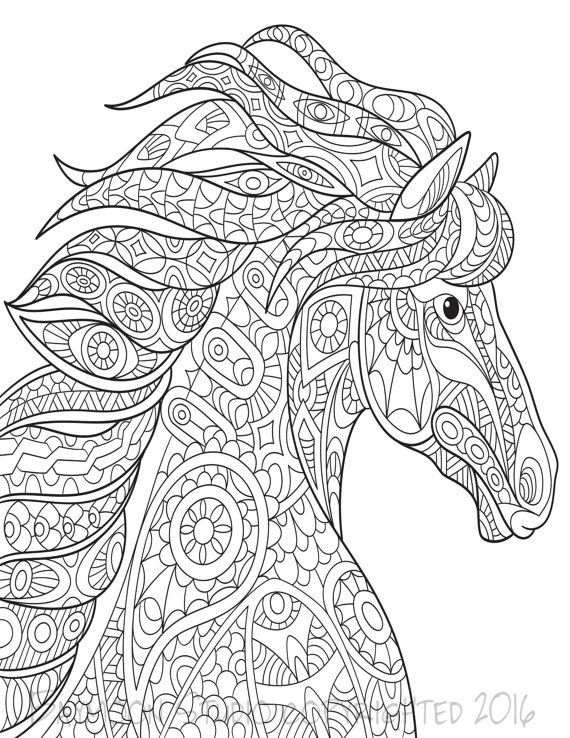 Wild Horse Coloring Page Printable Pages Adult Hand Drawn Digital Illustration INSTANT DOWNLOAD PRINT
