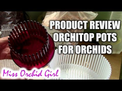 Orchitop pots review + Kiwi bark and clay media for orchids - YouTube