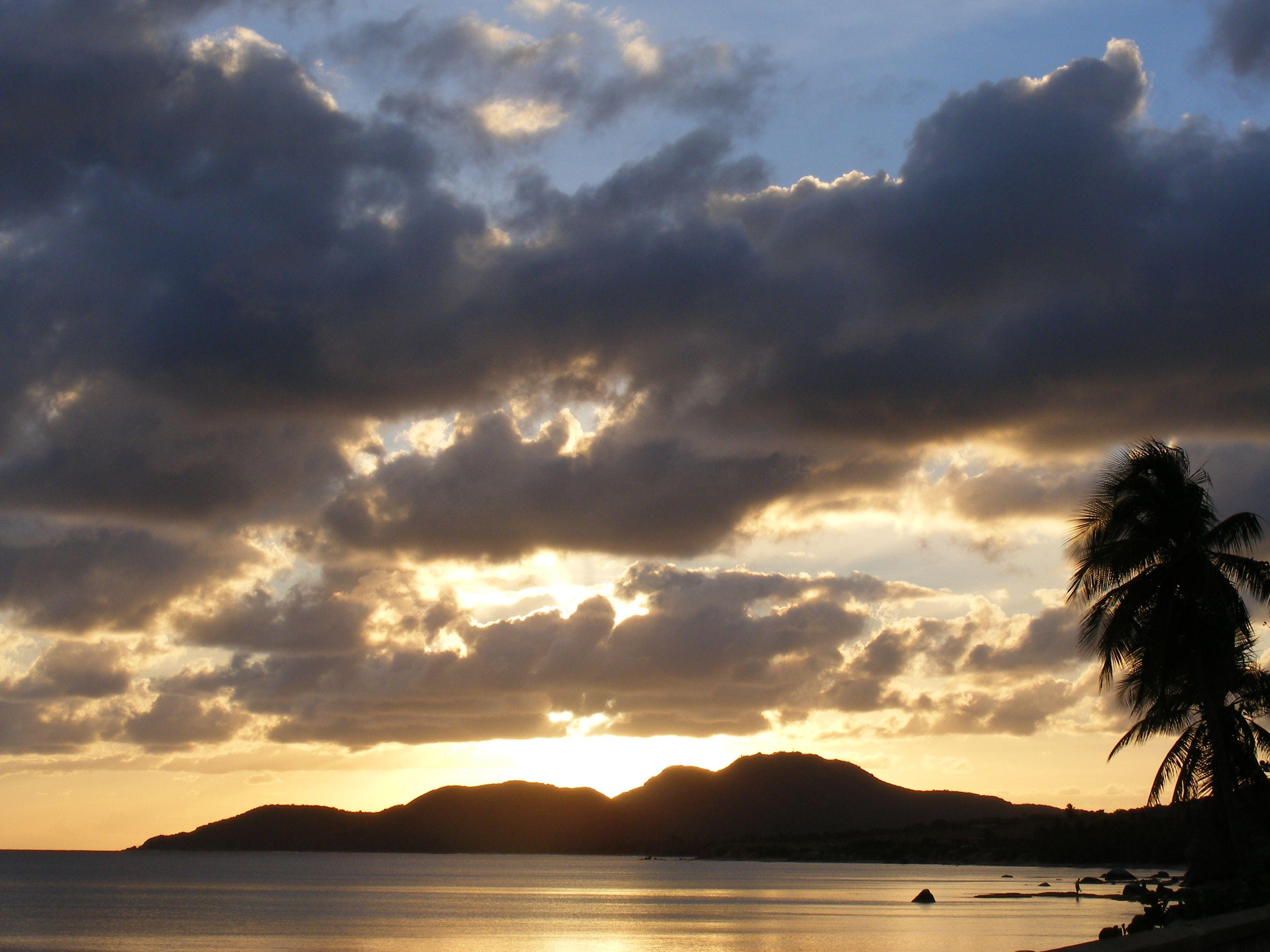 Someone take me back to Vieques. Vieques, Puerto rico