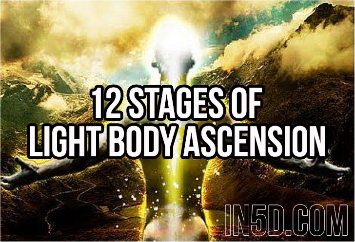 12 Stages Of Light Body Ascension Ascension Healing Books Science Of Consciousness